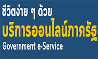 Government Service