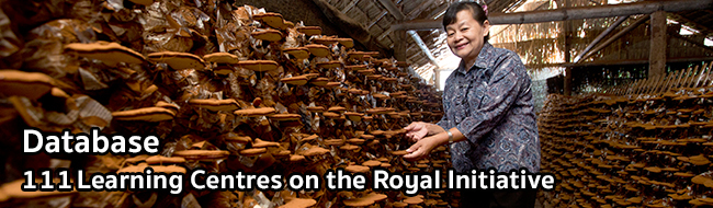 111 Learning Centres On The Royal Initiative